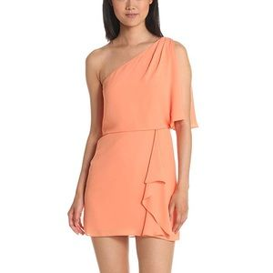 BCBGMaxazria Mina chiffon dress